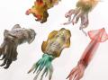 【週間ランキング】2012年11月第4週のアキバ総研ホビー系人気記事トップ5