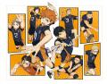 高校バレーアニメ「ハイキュー!!」、追加キャスト発表! 神谷浩史、名塚佳織、浪川大輔、田中一成、増田俊樹