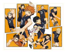 高校バレーアニメ「ハイキュー!!」、Vリーグとのコラボが決定! 3月1日/2日の男子プレミア全試合にて