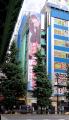 ゲオ メディアランド秋葉原店(旧メディアランド)、「ゲオ アキバ店」として7月19日にリニューアルオープン