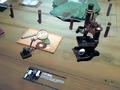 「進撃の巨人展」内覧会レポート! 恐怖の4D体感シアター、没入感ある立体機動装置体験、リアル芋や触れるマフラー、新キャラ初披露、1/1超大型巨人など
