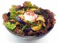 スタミナ丼「伝説のすた丼屋」、「戦国BASARA4 皇」とコラボ! 伊達政宗の牛タン丼など全5種類のコラボ丼を提供