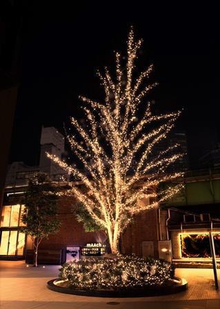 マーチエキュート神田万世橋、初となる春季限定イルミネーションを実施! 江戸彼岸桜が満開となる花見シーズンにあわせて
