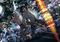 秋アニメ「いぬやしき」は10月12日より放送決定! キャスト当てクイズキャンペーン&本編に出演する声優募集も開始