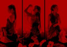 冬のアコースティックライブから10周年記念の武道館へ。Kalafinaが、ライブへの思いを語る!