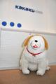 謎のぶちゃかわ犬「しいたけ」が遊びにきたぞ~! 「ラブライブ!サンシャイン!!」から、高海家のペットが我が家にも!!