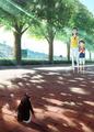 """森見登美彦の""""新境地""""、「ペンギン・ハイウェイ」がアニメ映画化決定!! ティザーポスター&特報映像解禁!!"""