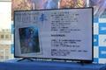 「ひぐらし」「うみねこ」新作発表──そして樋上いたるとのタッグで送る待望の新作は「惨劇サンドボックス」! 竜騎士07プロジェクト発表会レポート