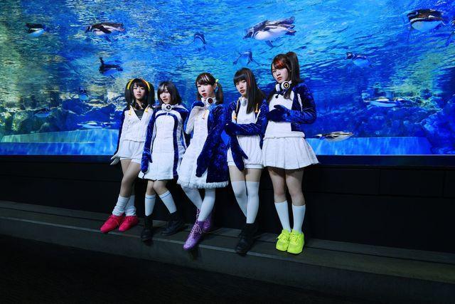 「けものフレンズ」発ペンギンアイドルユニット「PPP」デビューアルバム情報を一挙公開! ジャケ写はサンシャイン水族館で!