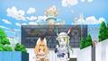 けものフレンズ新作オリジナルショートストーリー「ようこそジャパリパーク」があにてれで独占配信! コミケでDVDの無償配布も