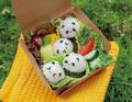 タカラトミー、パンダずしを作って回転ずしが楽しめる「超パンダコロコロ回転寿し」を10月25日に発売!