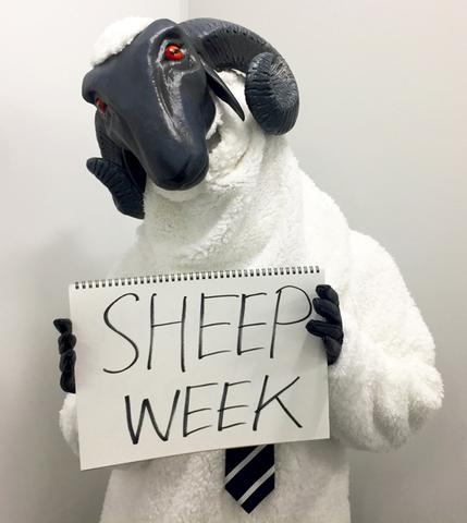「キャサリン・フルボディ」、10月29日~11月4日はSHEEP WEEK(ひつじ週間)! 最新情報やキャンペーンを毎日実施