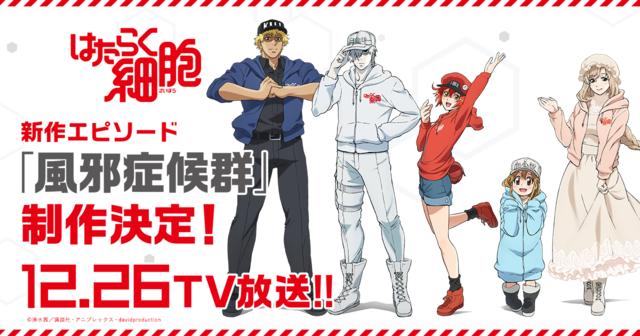 TVアニメ「はたらく細胞」新作エピソード「風邪症候群」制作+放送決定!