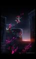 感動のラストのその後を描く!たつき監督が趣味で投下した(?)短編アニメ「ケムリクサ 12.1話」YouTubeにて公開中!!