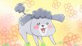 SNSで話題の「犬と猫どっちも飼ってると毎日たのしい」が2020年秋にショートアニメ化! キャストに花澤香菜、杉田智和など