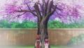 「新サクラ大戦 the Animation」、4/24(金)放送の第四話「友情満開!千年桜」のあらすじと先行カットが公開!