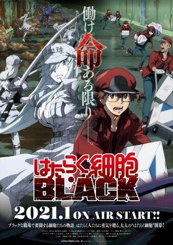 「はたらく細胞BLACK」、2021年1月TVアニメ化決定! PV、キービジュアル&メインスタッフ、キャストが一挙公開!!