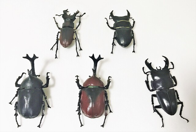 日本の夏、昆虫の夏を食玩で再現! 「エフトイズ  昆虫ハンター カブトムシ×クワガタ」で遊んでみた【イチオシ!食玩道 第11回】