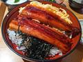 海鮮居酒屋「魚金」和洋全店で、ランチタイムにお得な「うなぎフェア」を7月8日から開催中!