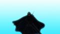 「ピーター・グリルと賢者の時間」、最終回第12話あらすじ&先行カット公開! BD&DVD第2巻、本日発売!!