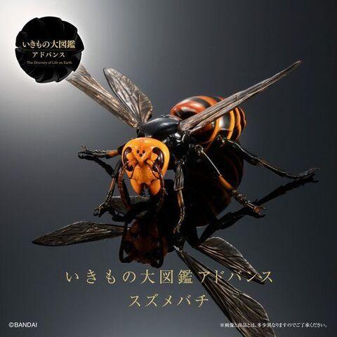 衝撃のクオリティ!「いきもの大図鑑」シリーズを進化させたハイグレードモデルシリーズに「スズメバチ」が登場!!