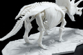 地球環境に優しい新素材を使用した「恐竜骨格プラモデル」が登場! ティラノサウルス&トリケラトプスが予約受付開始!!