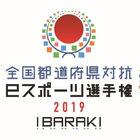 「全国都道府県対抗eスポーツ選手権 2019 IBARAKI」、追加タイトルが決定! 「ウイイレ2019」「GT SPORT」「ぷよぷよeスポーツ」の3タイトルに