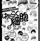 「はたらく細胞」×JKカルチャー!? 人気コミックのスピンオフが別冊フレンド2月号より連載スタート!