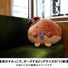 本日受注開始! 阪急電鉄×「すみっコぐらし」で誕生した「くり駅長」がビッグなぬいぐるみに!